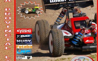 Segunda prueba del Provincial de Las Palmas 1/8 tt gas 2014