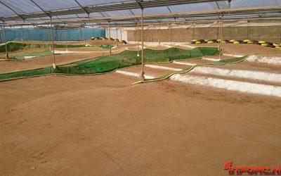6 de Febrero - Inauguración nuevo circuito Indoor Club RC La Jara