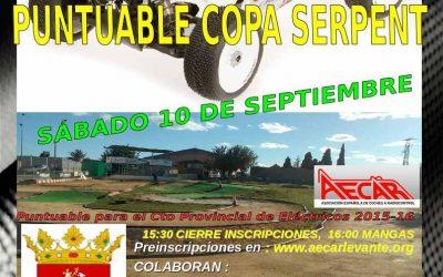 10 de Septiembre - Trofeo aniversario RC Buggy Sant Joan de Moro