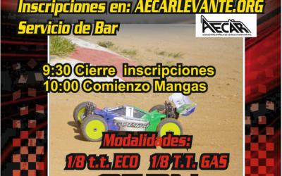 12 de Marzo - Quinta prueba del Campeonato provincial de Castellón, 1/8 nitro y eléctrico