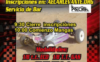 9 de Abril - Sexta prueba Campeonato Provincial de Castellón 1/8 TT Nitro y eléctrico
