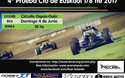 4 de Junio - Cuarta prueba del Campeonato de Euskadi 1/8 TT eléctrico 2017