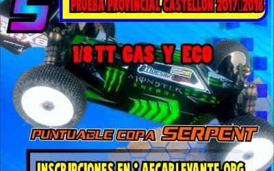 4 de Febrero - Quinta prueba provincial Castellón 1/8 TT nitro y Eco
